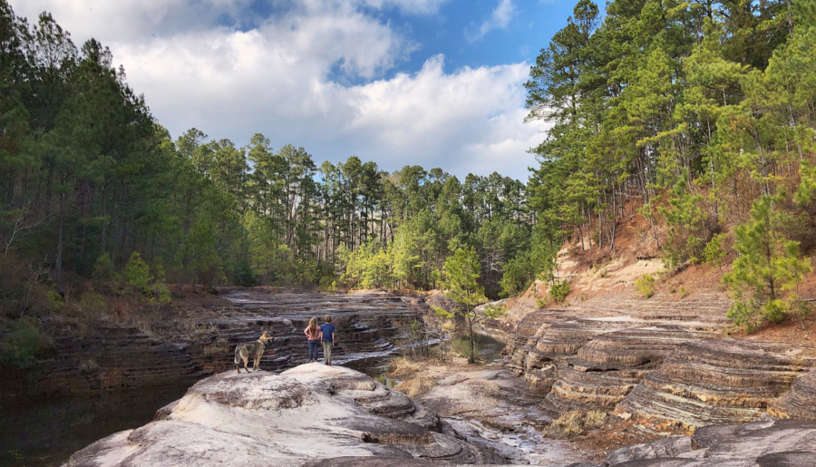 Explore The Little Grand Canyon of Arkansas